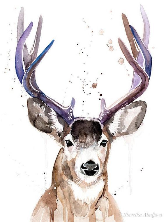 Original Watercolour Painting- Mule deer art, animal, illustration, animal watercolor, animals paintings, animals, portrait,