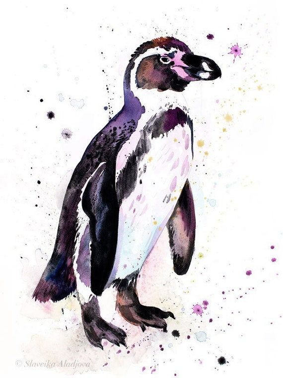 Original Watercolour Painting- Humboldt penguin art, animal, illustration, animal watercolor, animals paintings, animals, portrait,