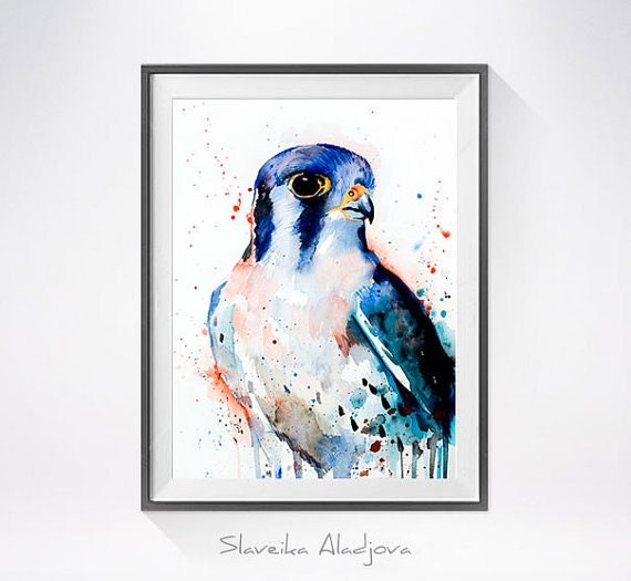 Original Watercolour Painting- American Kestrel art, animal, illustration, animal watercolor, animals paintings, animals, portrait,