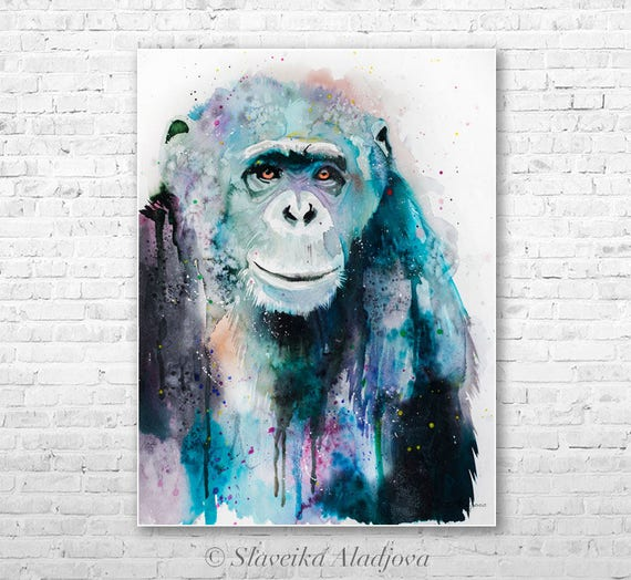 Original Watercolour Painting- Chimp Chimpanzee 3 art, animal illustration, animal watercolor, animals paintings, animals, portrait,