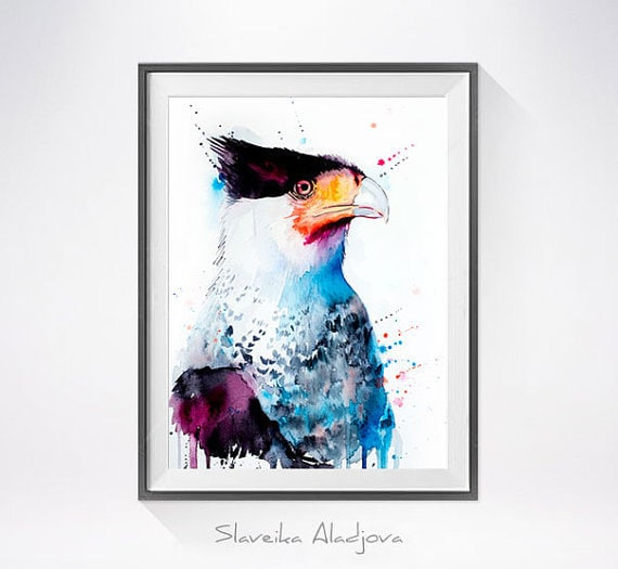 Original Watercolour Painting- Northern Crested Caracara art, animal, illustration, animal watercolor, animals paintings, animals, portrait,