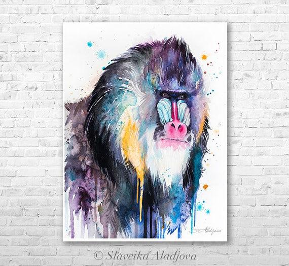 Mandrill watercolor painting print by Slaveika Aladjova, art, animal, illustration, bird, home decor, Nursery, Wildlife, monkey
