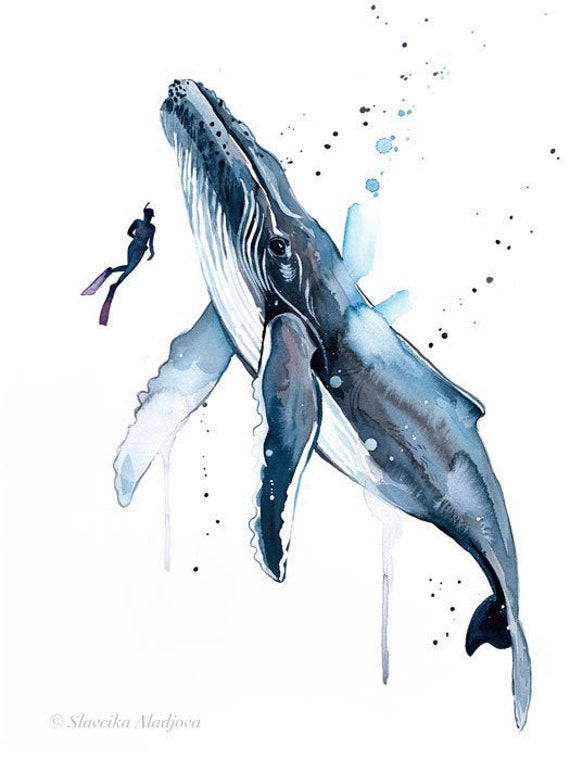Original Watercolour Painting- Scuba Diving with Humpback Whale art, animal, illustration, animal watercolor, animals paintings, animals,