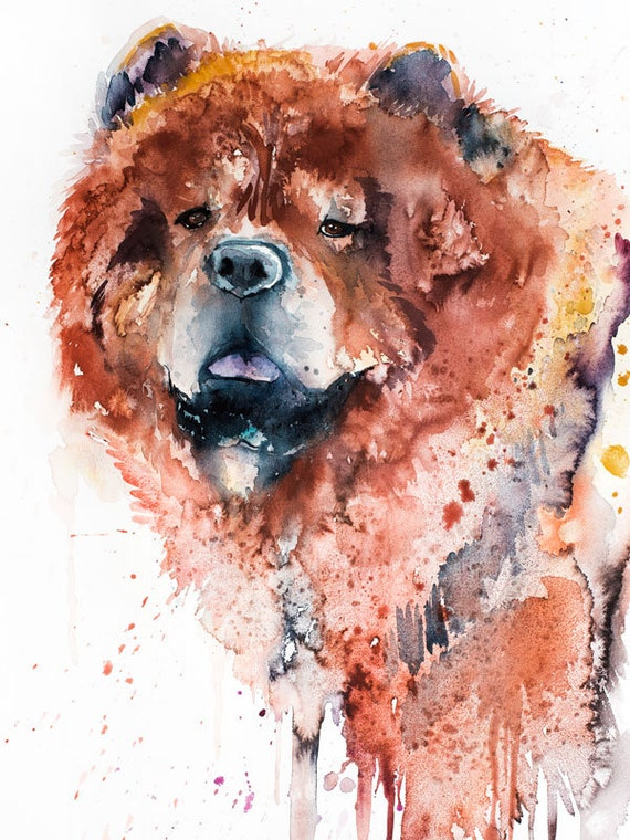 Original Watercolour Painting- Chow Chow art, animal, illustration, animal watercolor, animals paintings, animals, portrait,