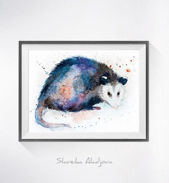 Original Watercolour Painting- Opossum art, animal illustration, animal watercolor, animals paintings, animals, portrait,