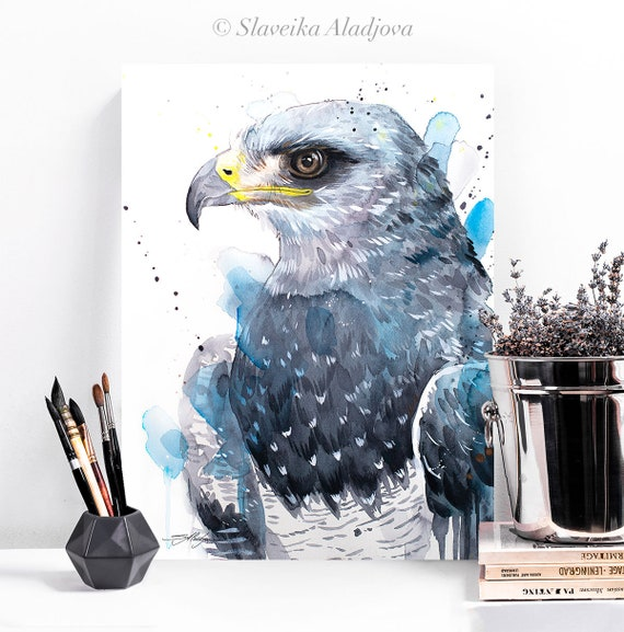 Black-chested buzzard-eagle watercolor painting print by Slaveika Aladjova, art, animal, illustration, bird, home decor, wall art, gift,