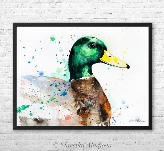Mallard Duck watercolor framed canvas by Slaveika Aladjova, Limited edition, art, animal, animal illustration,bird art