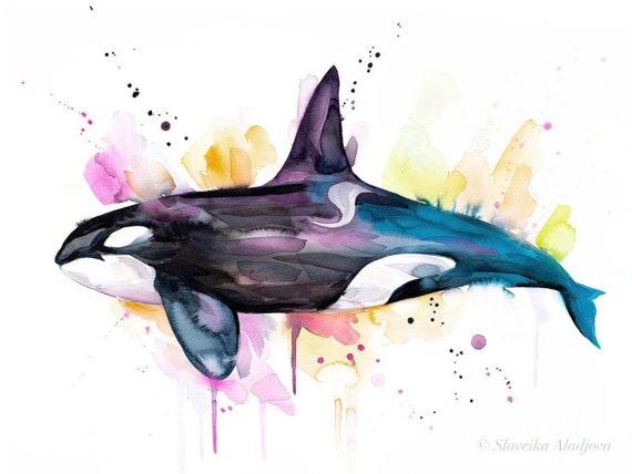 Original Watercolour Painting- Killer whale art, animal, illustration, animal watercolor, animals paintings, animals, portrait,