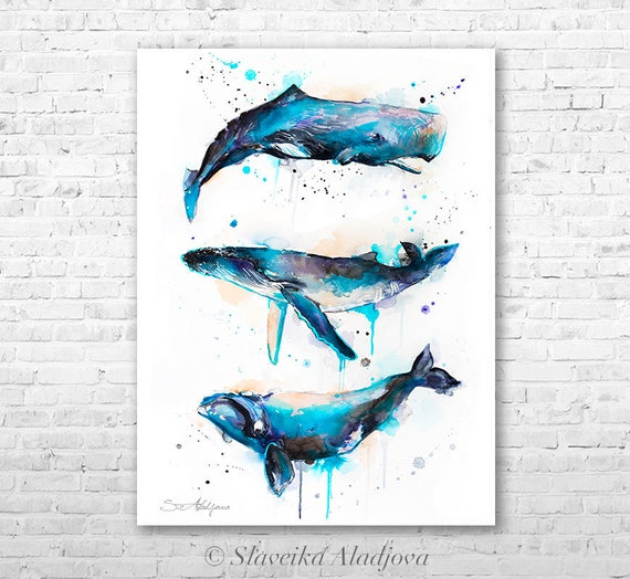 Sperm whale, Right whale,Humpback whale watercolor painting printby Slaveika Aladjova, art, animal, illustration, Sea art, sea life art,
