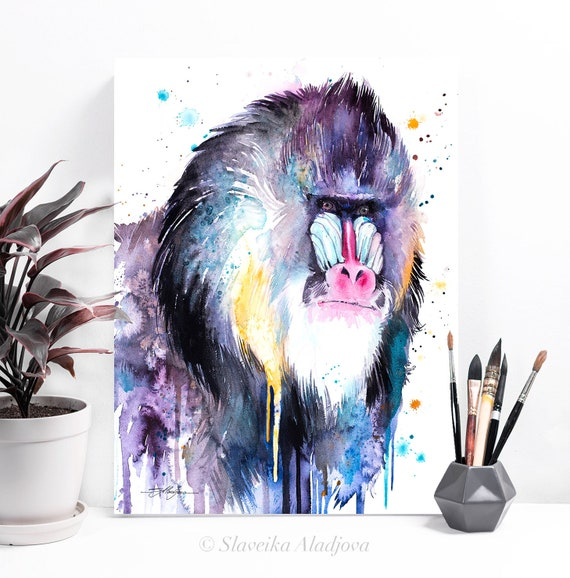 Mandrill watercolor painting print by Slaveika Aladjova, art, animal, illustration, home decor, Nursery, Wildlife, monkey, primate