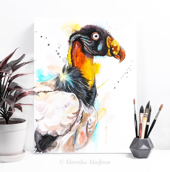 King vulture watercolor painting print by Slaveika Aladjova, art, animal, illustration, bird, home decor, wall art, gift, portrait,