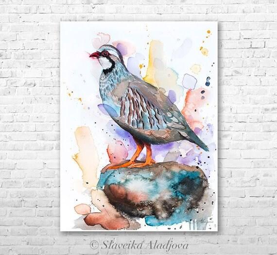 Original Watercolour Painting- Red-legged partridge art, animal, illustration, animal watercolor, animals paintings, animals, portrait,