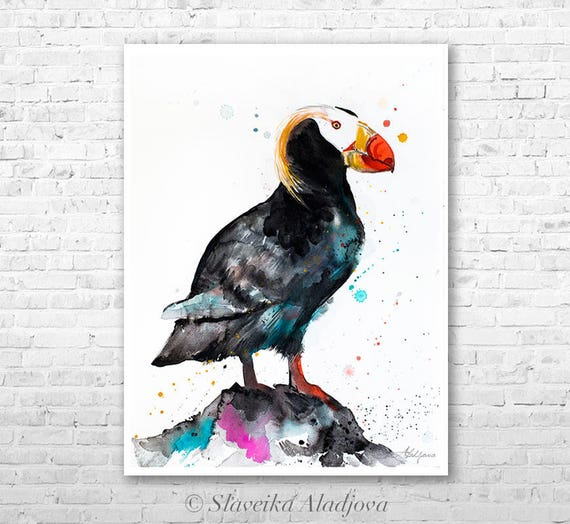 Tufted puffin watercolor painting print by Slaveika Aladjova, art, animal, illustration, bird, home decor, wall art, gift, portrait,