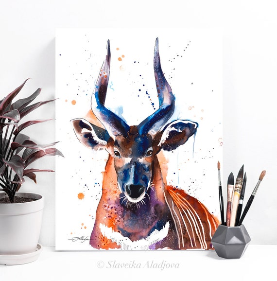 Bongo Antelope watercolor painting print by Slaveika Aladjova, art, animal, illustration, home decor, Nursery, gift, Wildlife, wall art