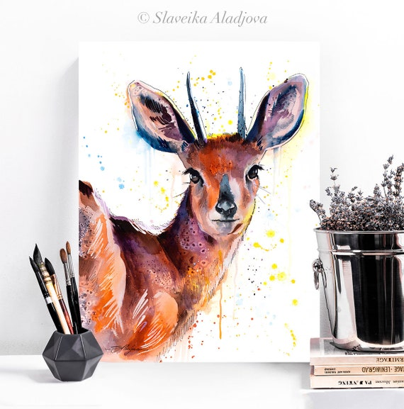 Steenbok Antelope watercolor painting print by Slaveika Aladjova, art, animal, illustration, home decor, Nursery, gift, Wildlife, wall art