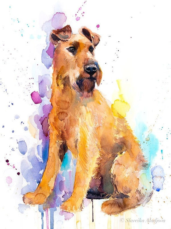 Original Watercolour Painting- Irish Terrier art, animal, illustration, animal watercolor, animals paintings, animals, portrait,