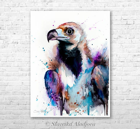 Cinereous Vulture watercolor painting print by Slaveika Aladjova, art, animal, illustration, bird, home decor, Wildlife, Contemporary