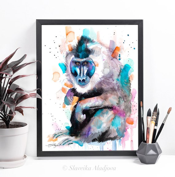 Drill Monkey watercolor framed canvas by Slaveika Aladjova, Limited edition, art, animal watercolor, animal illustration,