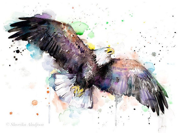 Original Watercolour Painting- Bald Eagle art, animal, illustration, animal watercolor, animals paintings, animals, portrait,