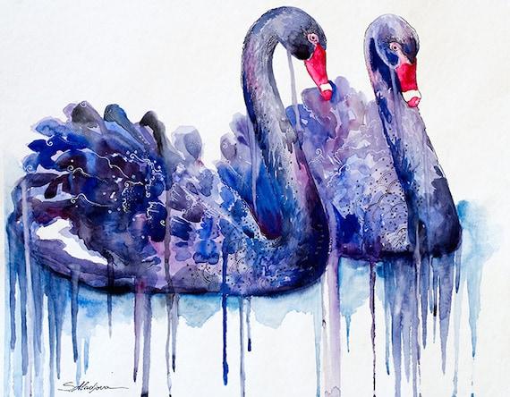 Original Watercolour Painting- Black Swans, bird watercolors, swans, swan, birds, bird, animal