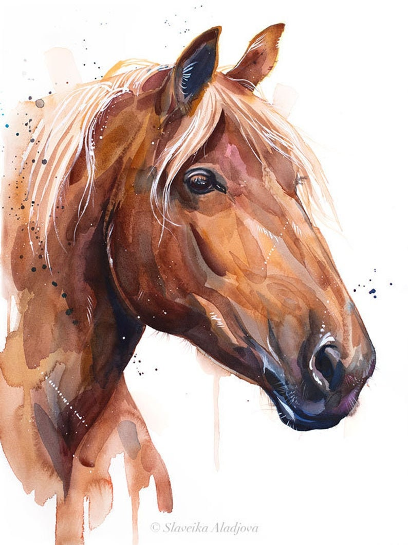 Original Watercolour Painting Suffolk Punch Horse Art Animal Illustration Animal Watercolor Animals Paintings Animals Portrait