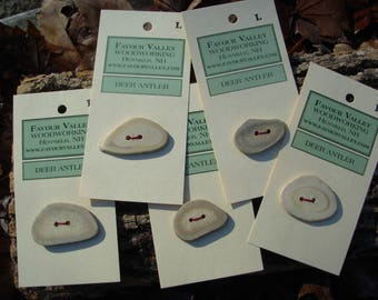 Extra Large antler slice buttons - one per card