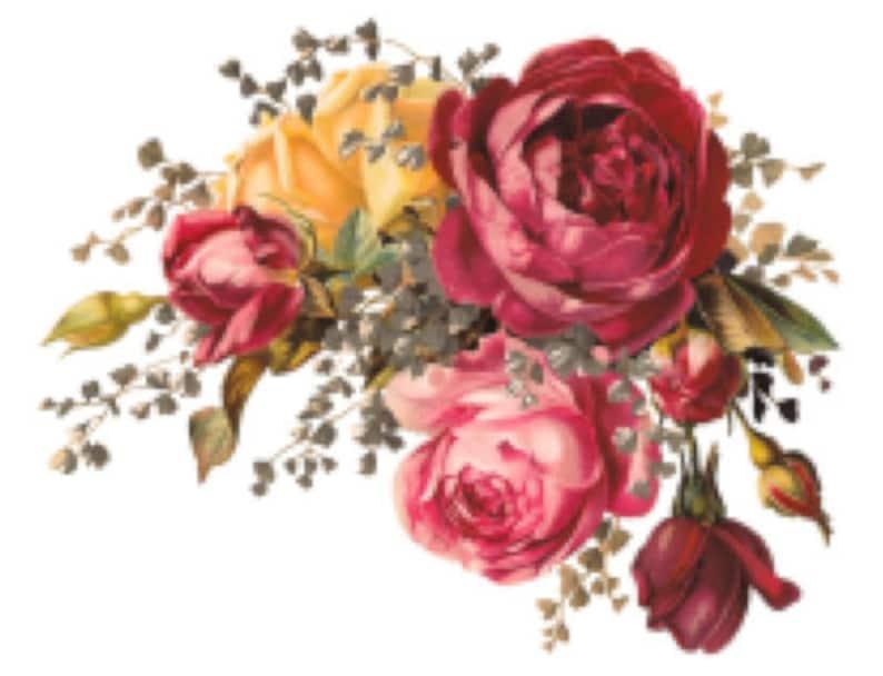 Vintage Image Shabby Roses Furniture Transfers Decoupage Etsy