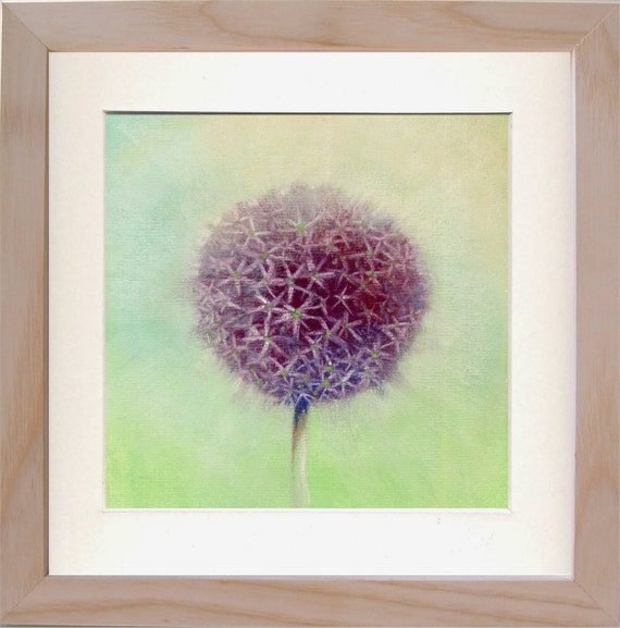 Allium Flower Print 7 X 7 Botanical Art From Etsy