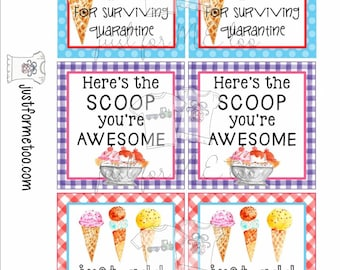 Instant Download Printable Ice Cream Bundle, Printable Tag, Instant Download, Gift tags, Ice Cream