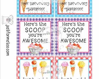 Instant Download Printable Ice Cream Bundle, Printable Tag, Instant Download, Gift tags, Ice Cream
