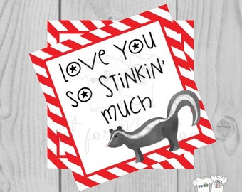 Valentine Printable Tags, Instant Download, Valentine's Day Tags, Square Gift Tags, Classroom Tag, Skunk Tag, love you so stinkin much
