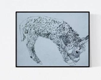 Horse portrait: Donkey - custom horse portrait - horse illustration - horse drawing - horse painting