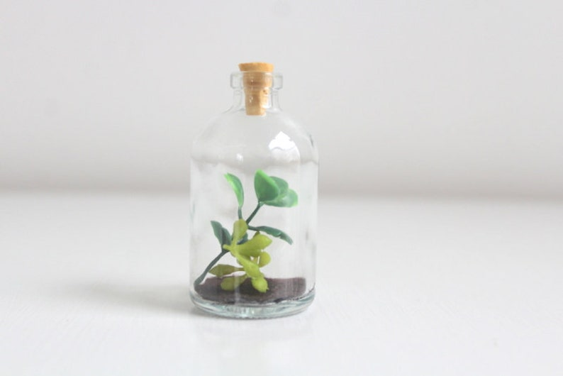 Faux Terrarium Garden in a Bottle Succulent Succulent Terrarium Miniature Garden Small Terrarium Bottle Terrarium Miniature Terrarium