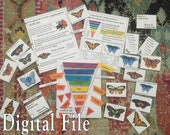 Butterfly Nomenclature Bundle | Taxonomy and Classification Printable | Digital File