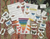 Butterfly Nomenclature Bundle | Taxonomy and Classification Printable | Physical Copy