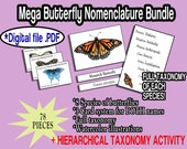 Butterfly Nomenclature Bundle   Taxonomy and Classification Printable   Digital File