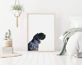 Printable Wall Art Black Cockatoo Print, Parrot Print, Australian Bird Wall Art, Art for Nursery, bedroom or living space. Australian