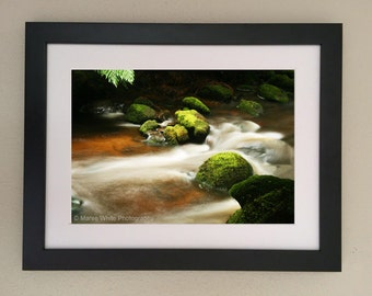 Shades of green, Tasmanian wilderness, Landscape photography, Fine Art print, Ready to frame, River, Bush, Water, Moss