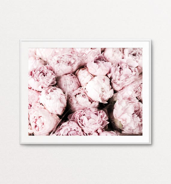 Peonies Photo - Pink Peonies, Peonies Print, Peonies Wall Art, Peonies Photograph, Blush Peonies, Floral Photography, Floral Print
