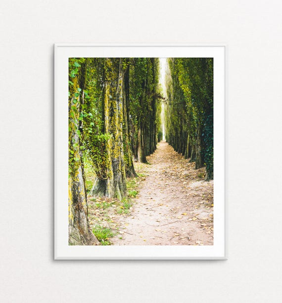 Nature Photography - France Photography, France Print, Ivy Path Photo, Autumn Photograph, Dreamy Photography, Home Decor, Nature Wall Art