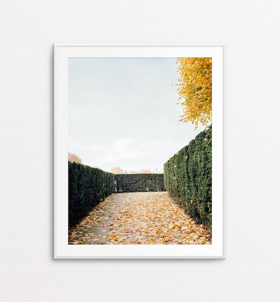 Autumn in Paris, Paris Photography, Tuileries Photograph, Paris Photography, Paris Print, Paris Wall Art, Paris Bedroom Decor, Paris Decor