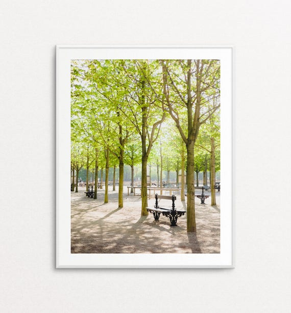 Luxembourg Gardens Photo - Paris Photograph, Paris Bedroom Decor, Paris Decor, Home Decor, Paris Print, Paris Wall Art