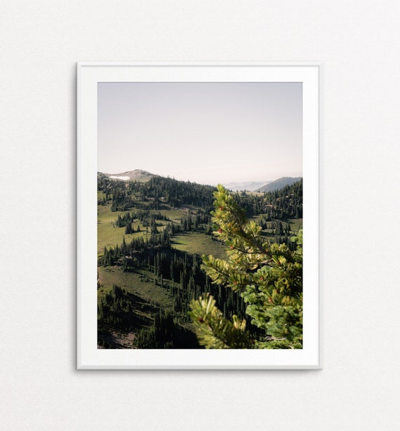 Alpine Meadows at Mount Rainier National Park, Nature Wall Art, Nature Print, PNW Print, PNW Photography