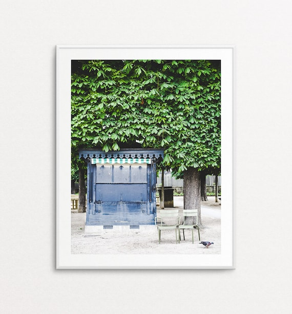 Luxembourg Gardens Photo - Paris Photograph, Paris Print, Paris Chairs, Paris Decor, Home Decor, Garden Photography
