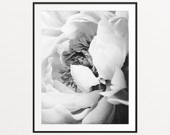 Peony Print, Peony Wall Art, Floral Print, Black and White Peonies, Botanical Print, Floral Wall Art, Black and White Prints