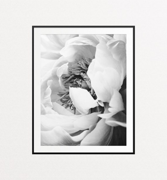 Peony Print, Peony Wall Art, Floral Print, Black and White Peonies, Botanical Print, Floral Wall Art, Black and White Prints