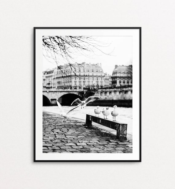 Pont Neuf Photo, Paris Photography, Paris Print, Paris Decor, Paris Wall Art, Seine River, Paris Large Wall Art Print, Paris Seagulls