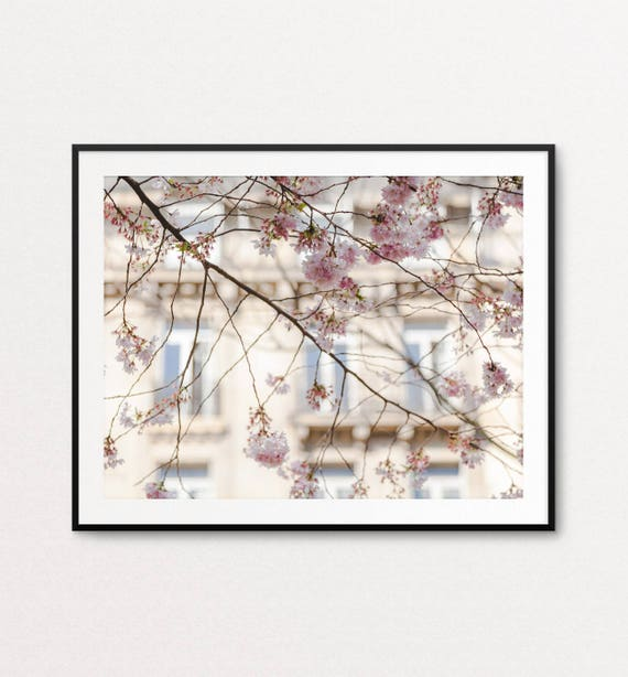 Paris Photography, Paris in the Spring, Paris Print, Paris Decor, Home Decor, Paris in Bloom, Paris Wall Art, Paris Bedroom Decor