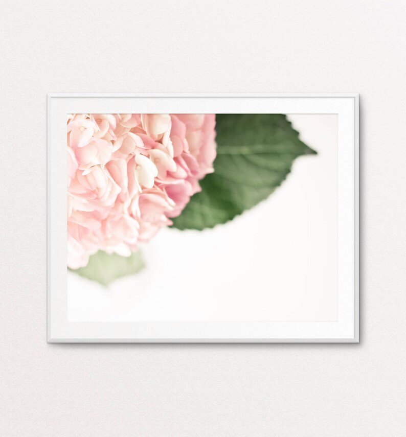 White Hydrangea Photo Floral Wall Art Floral Photography Floral Print Ethereal Photo Hydrangea Print Pink Dreamy Photo Home Decor