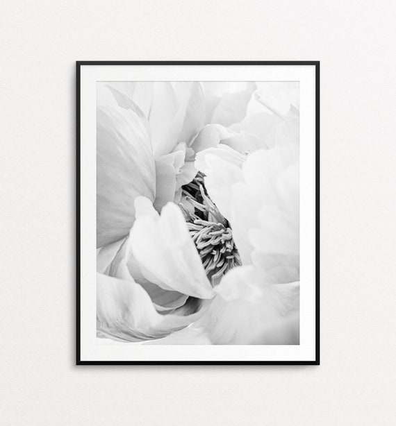 Peony Print, Peony Wall Art, Floral Photography, Floral Print, Black and White Peonies, Floral Decor, Floral Wall Art, Peonies Wall Art